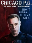 Chicago PD: A Beautiful Friendship 1×15