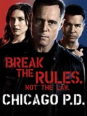 Chicago PD: Born Into Bad News 2×23