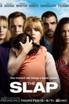 The Slap (US): Ritchie 1×08