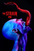 The Strain: Fallen Light 2×12