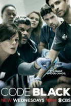 Code Black: Diagnosis of Exclusion 1×15