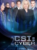 CSI: Cyber: Legacy 2×18