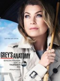 Greys Anatomy: Family Affair 12×24