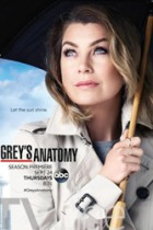 Greys Anatomy: I Wear the Face 12×17