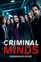 Criminal Minds: 14×09