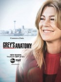 Greys Anatomy: 15×13
