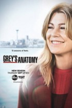 Greys Anatomy: 15×24